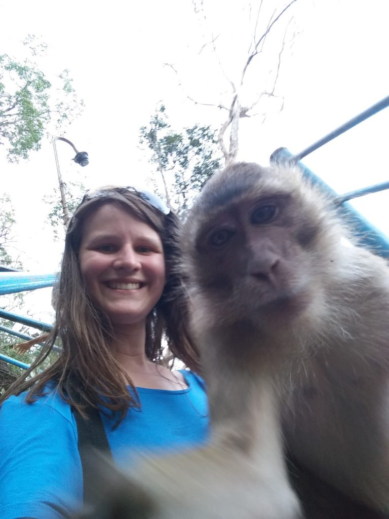 Split second before the monkey attempted to eat my phone.