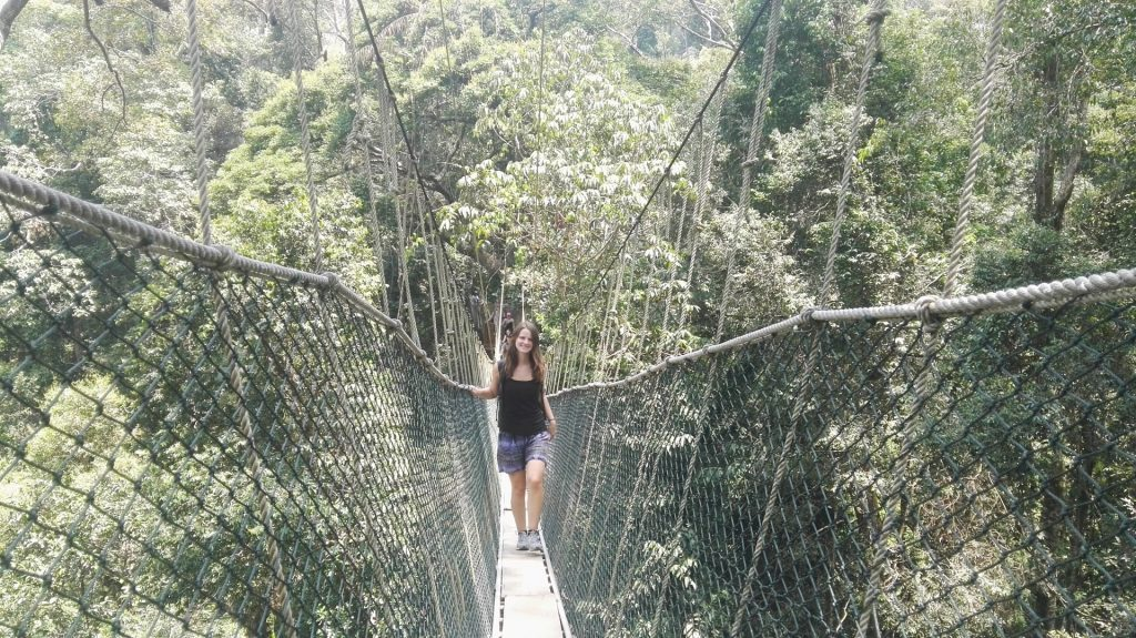 Walking through the canopy walkway.