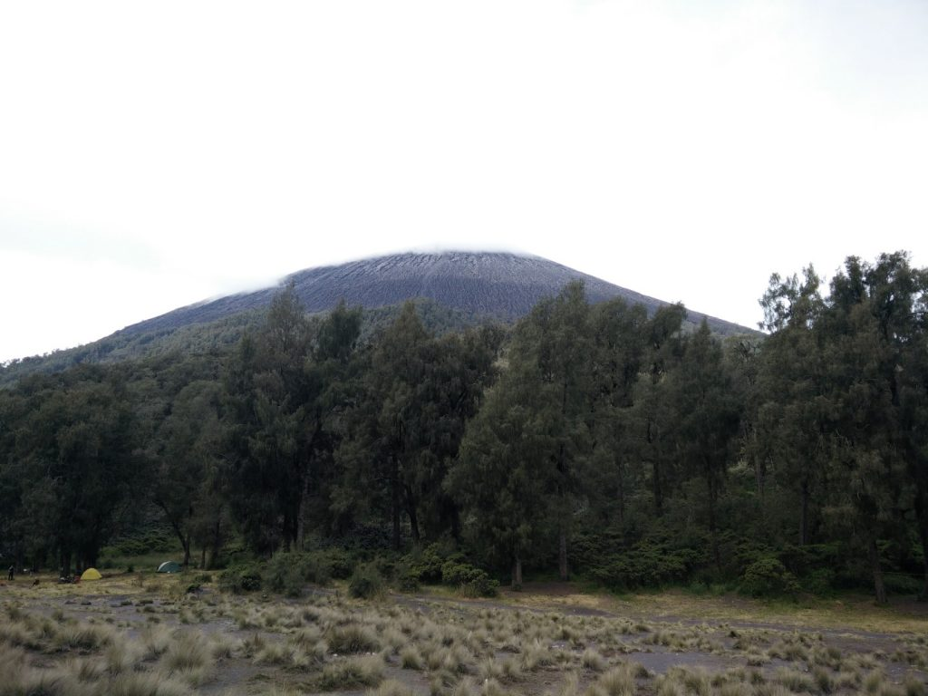 Semeru's peak, hidden in the clouds. We climbed that ^^