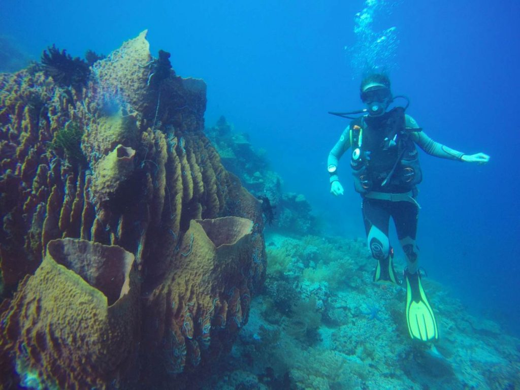 Me with one of the giant corals